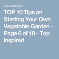 TOP 10 Tips on Starting Your Own Vegetable Garden - Page 6 of 10 - Top Inspired