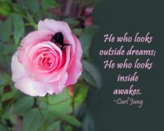 Quote by Carl Jung Rose Quotes, Carl Jung, Mindfulness Quotes, Spiritual Quotes, Positive Thoughts, Awakening, Spirituality, Inspirational Quotes, Wisdom