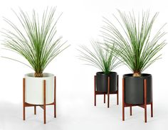 Case Study Cylinder Planter With Wood Stand - hivemodern.com