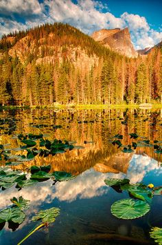 places to see in colorado | Sunrise at Nymph Lake - Colorado | Places to Visit-Colorado