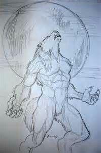 A Werewolf tattoo sketch