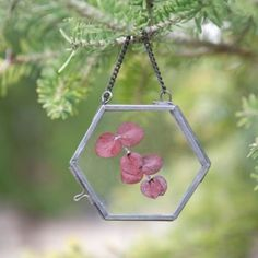 Botanical Frame Ornament, Hexagon in Holiday TRIM YOUR TREE Ornaments Botanical at Terrain