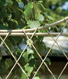 Garden trellis panel in stone colour with climbing leaves. Lattice design in strong steel wirework, hand made by British designers Garden Requisites. Metal Trellis Panels, Garden Trellis Panels, Trellis Fence, Lattice Design, Deck Design, Garden Design, Door Canopy, Farm Gardens, Planters