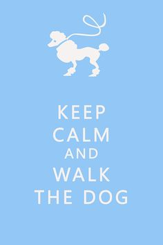 """I think it should say, """"Keep Calm and Hug Your Dog.""""  :D    #dogs #poodle"""