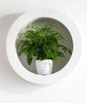 planten voor in badkamer