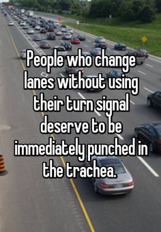 """""""People who change lanes without using their turn signal deserve to be immediately punched in the trachea. """""""