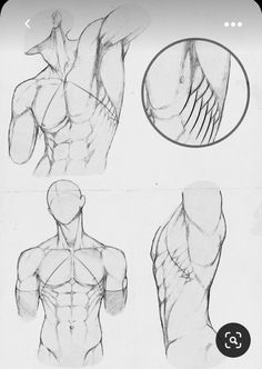 Body Drawing Tutorial, Sketches Tutorial, Body Reference Drawing, Drawing Reference Poses, Anatomy Sketches, Art Drawings Sketches Simple, Human Anatomy Drawing, Human Body Drawing, Art Poses