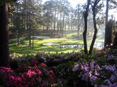 Augusta National Golf Club, Other