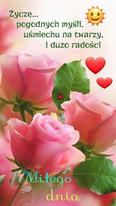 Good Morning Funny, Morning Humor, Facebook, Rose, Disney, Flowers, Fotografia, Good Morning, Pink