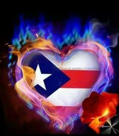 Puertorican heart on fire Puerto Rican Power, Puerto Rican Music, Puerto Rican Girl, Puerto Rican Flag, Puerto Rican Actresses, Isla Island, Dream Catcher Quotes, Pr Flag, Marijuana Wallpaper