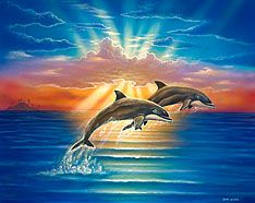 Diamond Painting Two Dolphins in the Sun Rays Kit
