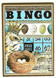 Bingo card. Bird nest
