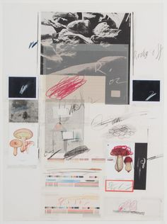 Cy Twombly, Natural History Part I, Mushrooms I-X
