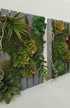 Resultado de imagem para vertical gardens with succulents
