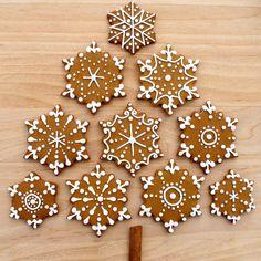 CosmoCookie: Iced Gingerbread Snowflake Cookies and the U.S. Botanical Gardens