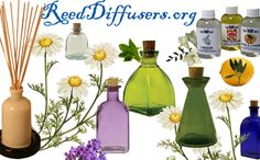 DYI - Diffuser Reeds, Reed Diffuser Oils, Reed Diffuser Bottles, SuppliesReed Diffusers
