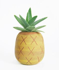 pineapple planter.