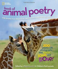 National Geographic Book of Animal Poetry (4-5-6-7-8Y) [Poetry]