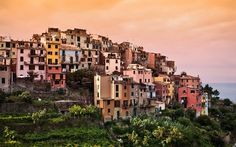 Cinque Terre: Day Trip from Florence - Guided Group Tour | Guided tour in Florence, Cinque Terre | Select Italy