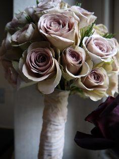 amnesia roses...my favourite