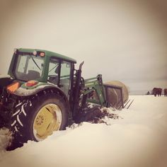 I had a rough year trying to feed the cattle... Winter 2013/2014 has been rough 5 months of this... Nov 2013 - April 2014