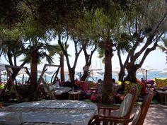 bitez turkey hotel eucaliptus