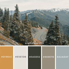Color palette - Hazelnut inspo color schemes Gray Asphalt Road on Cliff Color Palette Color Schemes Colour Palettes, Nature Color Palette, Colour Pallette, Grey Palette, Colors Of Nature, Bedroom Color Palettes, Decorating Color Schemes, Color Schemes With Gray, Rustic Color Schemes