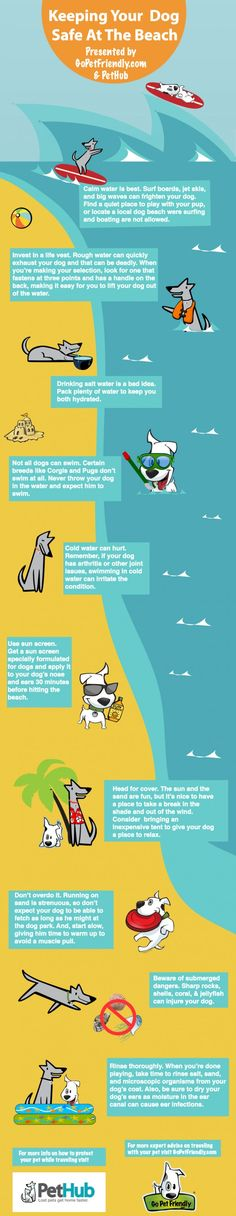Infographic - Keeping Dogs Safe at the Beach