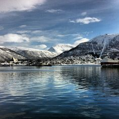 "See 604 photos and 15 tips from 2911 visitors to Tromsø. ""There are lots to do around Tromsø. Go for dog sledging, sauna fjord cruise, chase the. Beautiful Norway, Tromso, Random Pictures, Future Travel, Ancestry, Sweden, Wander, Places Ive Been, Scandinavian"
