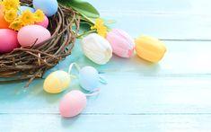Indir duvar kağıdı Mutlu Paskalya, bahar, laleler, çiçekler, Paskalya yumurtaları, yuva, yumurtalar