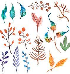 Floral design elements / El blog de El Marques!