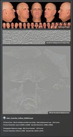 Surface Mimic : High resolution color 3D scan textures for digital artists