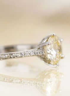 24 Best Engagement And Wedding Rings Images Halo Rings Wedding