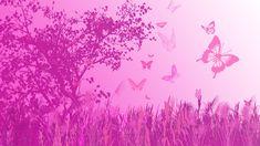 Light Pink Butterfly Wallpaper Butterfly pink laptop hd