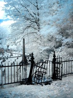 mt hope cemetery rochester ny - One of the most peaceful cemeteries and one of my favorite hometown places! Cemetery Monuments, Cemetery Headstones, Old Cemeteries, Cemetery Art, Graveyards, Old Churches, After Life, Abandoned Places, Belle Photo