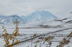Less than 30% of the visitors who go to Denali National Park & Preserve actually get to see Mt. McKinley without it being blocked by the clouds.