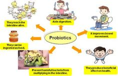 Probiotics For Kids, What Are Probiotics, Prebiotics And Probiotics, Health And Nutrition, Health And Wellness, Gut Health, Family Chiropractic, Chiropractic Quotes, Bon Appetit