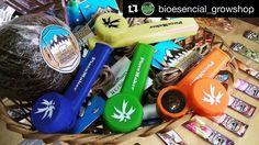 @bioesencial_growshop  Todo @piecemakergear con @honeywicks de regalo... Imperdible no te quedes sin la tuya !! Blaze your own trail. #piecemakergear.com #piecemaker #blazeyourowntrail #byot #expoweed #puentealto #chile #santiago #vivachile #instachile #buenosdias #marihuana #marijuana #bong #420 #stoner #headshop #moderntrail #siliconebong #adventureanywhere #weedstagram #uruguay #hightimes #dopecup #bigindustryshow #montevideo  #champstradeshow  @en_vola @quema_smokeshop @chileweed…