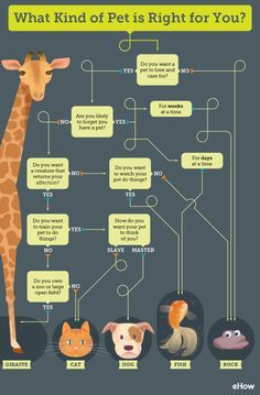 I love this decision tree on how to choose the right kind of pet for you. I want the giraffe.