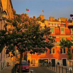Sunset light  on the Mouraria neighborhood and battlements of São Jorge Castle  Lisbon. #sunset #instasunsets #sunsetlovers #orangesunset #cityshots #citylife #streetvision #streetphotography #castelosaojorge #mouraria #lisboa #lisbon #lisbonne #lissabon #amar_lisboa #instalike #instalisboa #instalisbon #instatravel #instacool #instagood #travelgram #wonderfulplaces #beautifuldestinations #visitlisboa #visitlisbon #cantskipus #visitportugal #portugal #walkinginlisbon