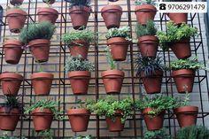 Gift a Plant, Gift a Better Tomorrow Address: A-91, Vigyan Nagar, Jagatpura, Jaipur, 302017 Contact No: +91-9706291479  #Decor #Plants #Nature #Gifts #Customized #Chocolates #Flowers #oxy3plants #DipankarRabha #CityShorJaipur