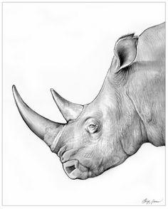 Rhino Drawing by Greg Joens
