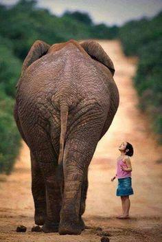 Meisje met olifant