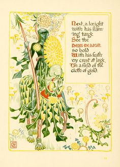 Walter Crane Dandelion. From A Floral Fantasy in an Old English Garden, 1899. Color relief print