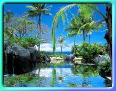 83357-Tropical-Paradise-Tropics-Lake-Ocean-Palm-Trees-Relax-Relaxing-Happy-....gif (379×300)