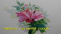 Hibiscus  -  in water color  - step by step coloring
