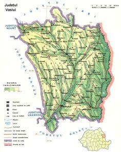 Vaslui county Map
