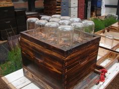 Mason Jar bee hive
