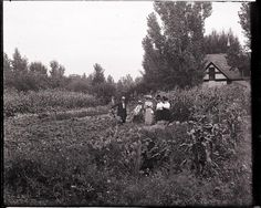 Sherwood St. Garden. (Several students standing in Sherwood St. garden.) 1912. UHPC, University Archive, Archives and Special Collections, CSU, Fort Collins, CO
