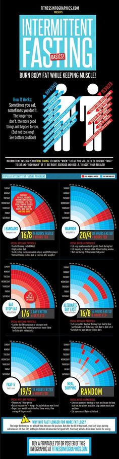 The hottest trend of the past few years Intermittent Fasting proves that one can burn fat while building muscle (or get very close to it)! This infographic breaks down the benefits and the six most popular fasting regimens. Remember the best regimen for Reto Fitness, 2 Week Diet Plan, Warrior Diet, Before Wedding, Fat Loss Diet, Stop Eating, Clean Eating, Diet Plans To Lose Weight, Intermittent Fasting
